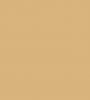 1001 beige